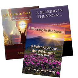 "Read Samples/Free PDFs of ""A Blessing in the Storm"""